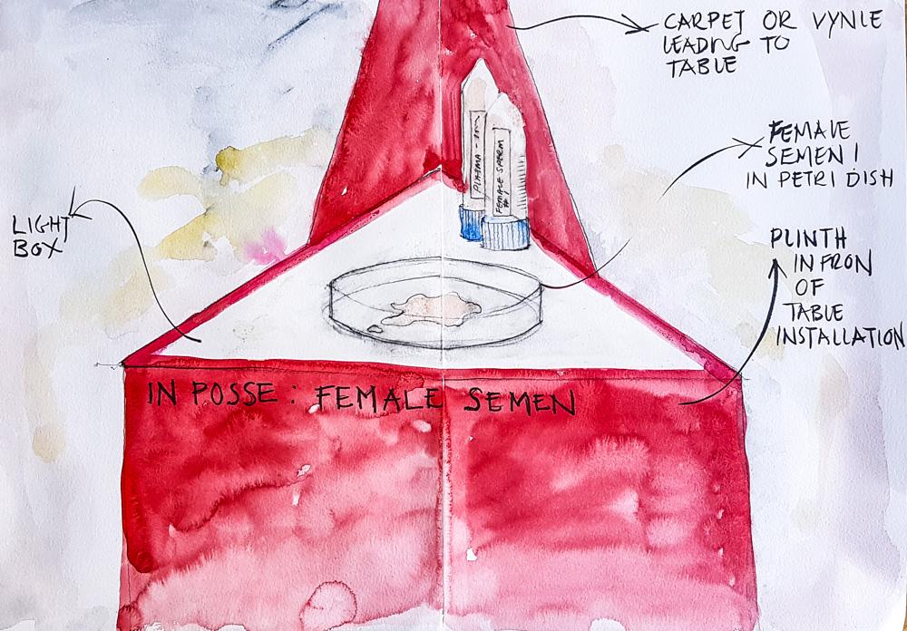 sketch detailing female semen and details of in posse