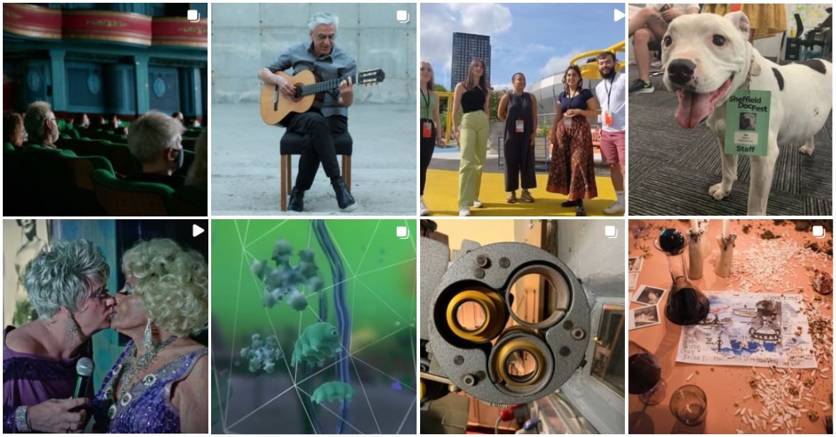 """Composite of eight images. 1. A group of masked people sit in a cinema. 2. A white-haired man sits on a chair, playing guitar in front of a concrete wall. 3. Five people stand in a line on a yellow pavement, against a city skyline. 4. A dog looks to camera, wearing a badge which reads """"Sheffield DocFest"""". 5. Profile shot of two drag queens kissing. 6. Green and blue telescopic image of amoeba. 7. Side view of a film projector. 8. View of a table with nuts scattered across it."""